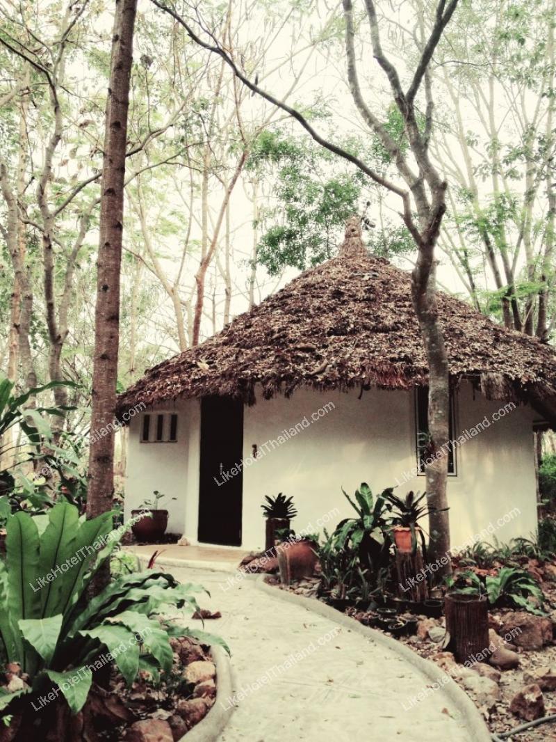 Deluxe Garden