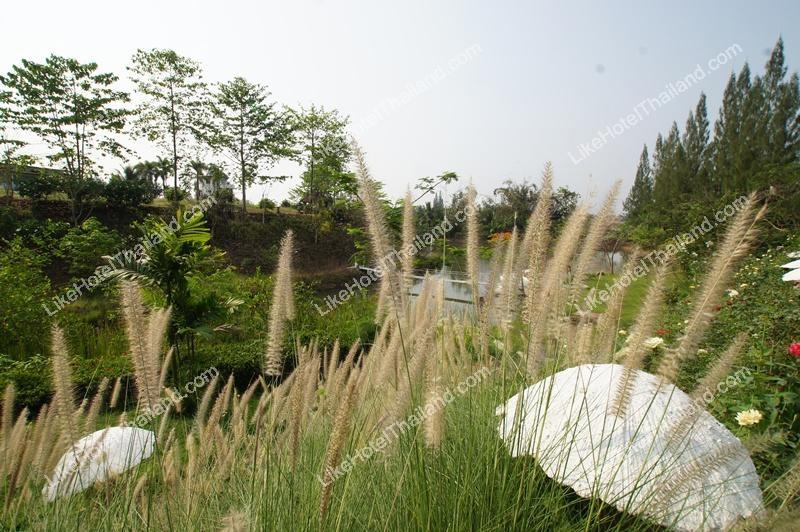 รูปของโรงแรม โรงแรม บ้านไร่พรสวรรค์ สวนผึ้ง
