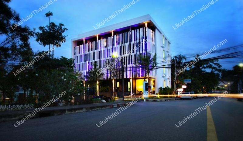 รูปของโรงแรม โรงแรม บลูมังกี้โฮสเทล ภูเก็ต