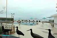 รูปโลโก้ ของ โรงแรม บ้านฝ้าย แฟมิลี่พูลวิว หัวหิน ( ติดทะเล มีสวนน้ำในที่พัก พร้อมเครื่องเล่น )