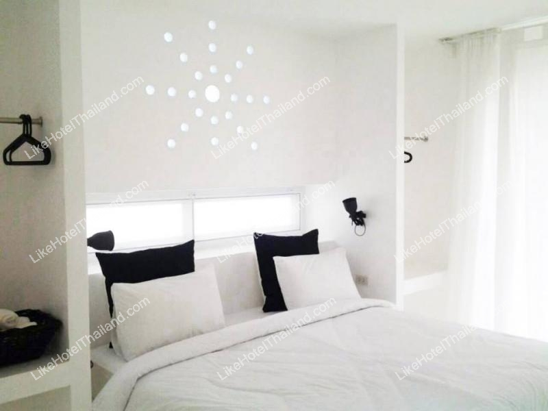 House Suite