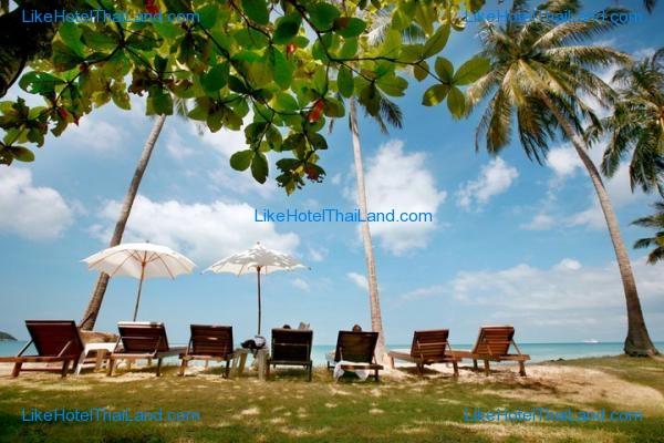 โรงแรม ลิพา ลอดจ์ บีช รีสอร์ท เกาะสมุย