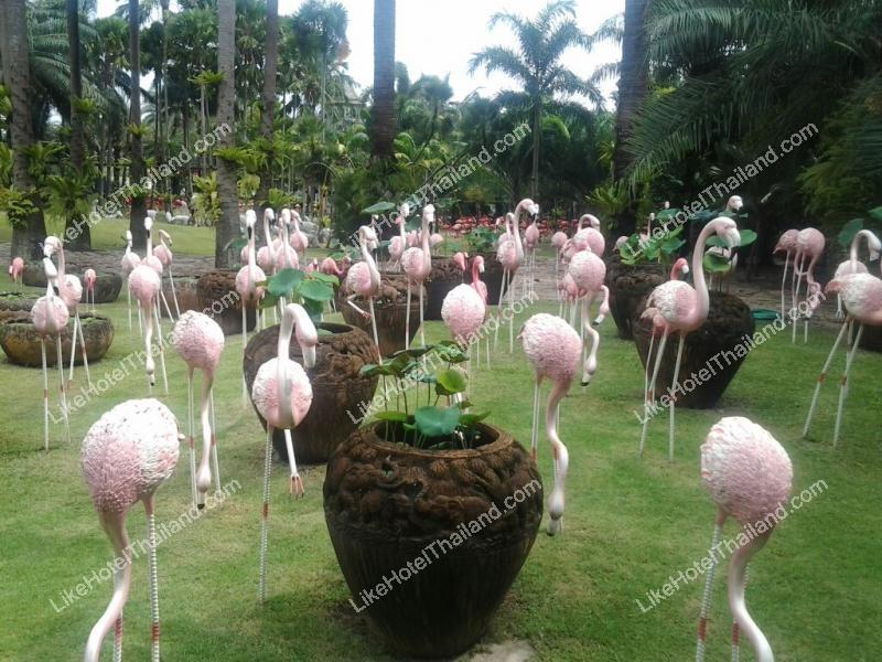 รูปของโรงแรม โรงแรม สวนนงนุช พัทยา จังหวัดชลบุรี
