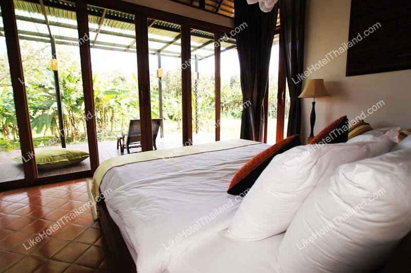Single villa King bed