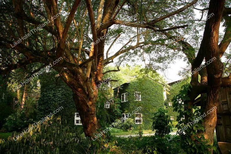 รูปของโรงแรม โรงแรม เก๊าไม้ล้านนา รีสอร์ท สันป่าตอง เชียงใหม่