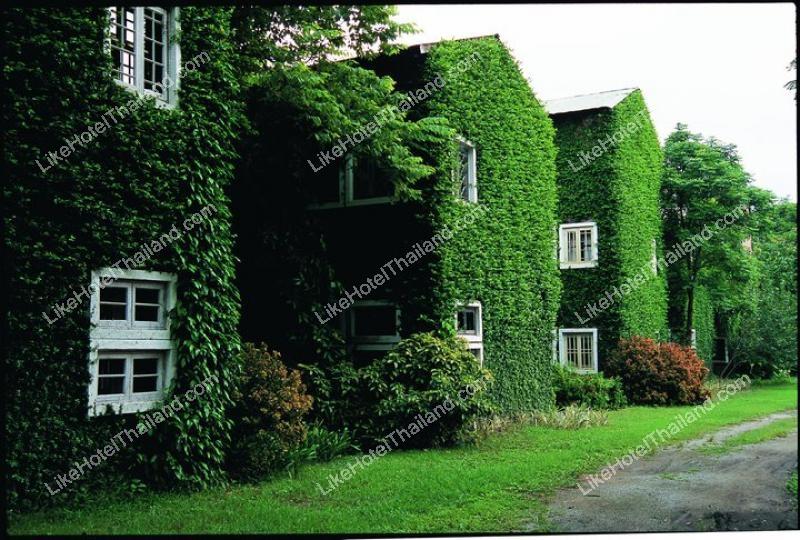 โรงแรม เก๊าไม้ล้านนา รีสอร์ท สันป่าตอง เชียงใหม่